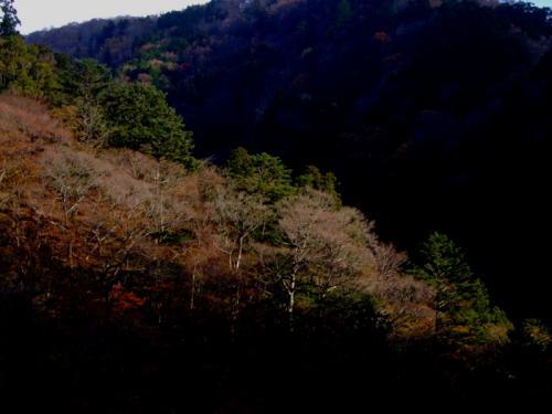 小田深山08