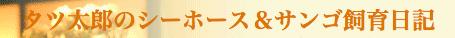 タツ太郎のシーホース&サンゴ飼育日記
