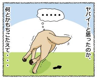 羊の国のラブラドール絵日記 3月28日2