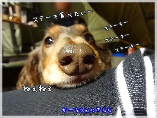 1018_004.jpg