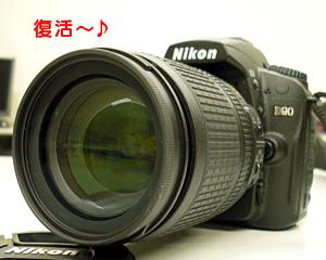 d90_20091215_3.jpg