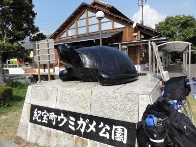 紀宝町ウミガメ公園08252