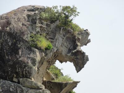 獅子岩08253