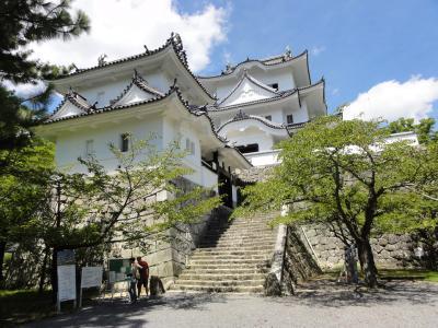 伊賀上野城08283
