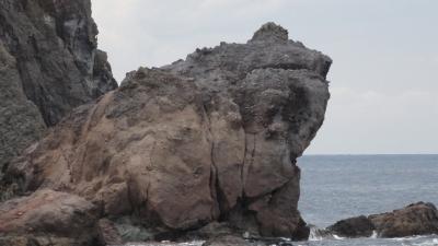 香住海岸のカエル1532