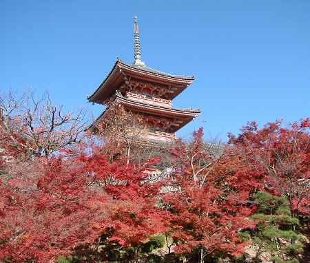 紅葉こしの塔