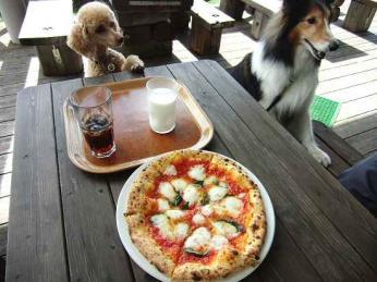 長門牧場でピザを食べる