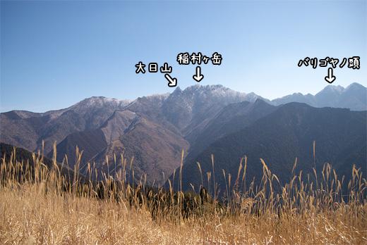 20100221-1.jpg