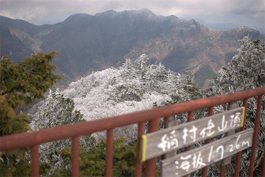 20100424-18.jpg