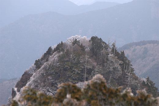 20100424-19.jpg