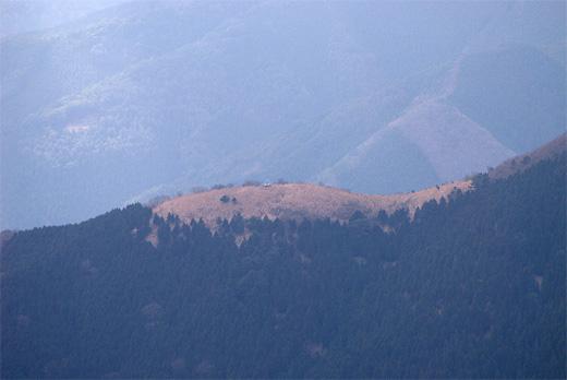 20100424-20.jpg