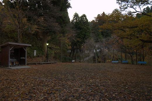 20101113-12.jpg