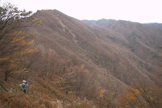 20101123-15.jpg