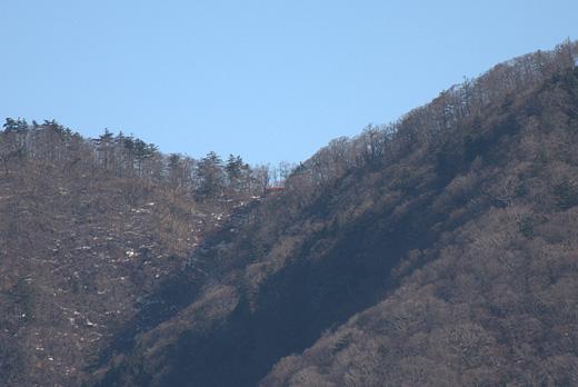 20101212-10.jpg