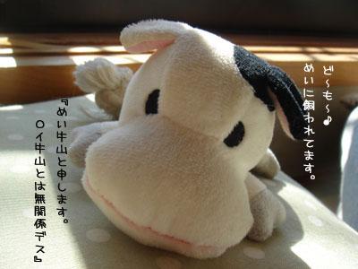 DSC0020120100204.jpg