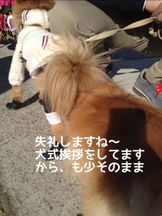 fc2blog_20131127204310478.jpg