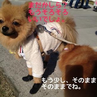 fc2blog_201311272043435ae.jpg