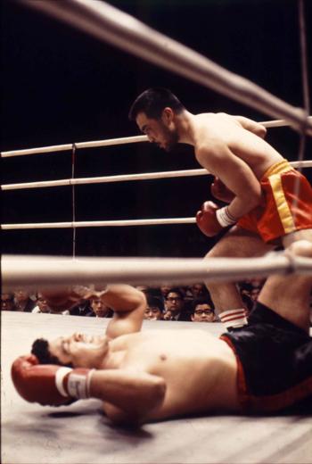 ボクシングのウンチク  その10  スーパー・ライト級編