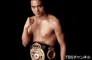 ボクシングのウンチク  その13  ミドル級編