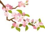 桜アイコン