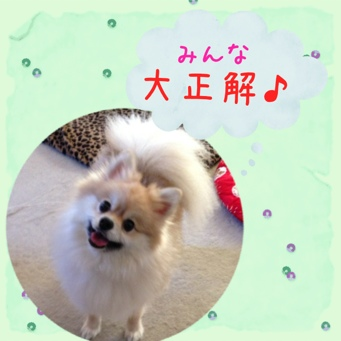 fc2blog_2013112619204346b.jpg