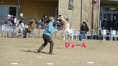 meiken3_convert_20110113200603.jpg