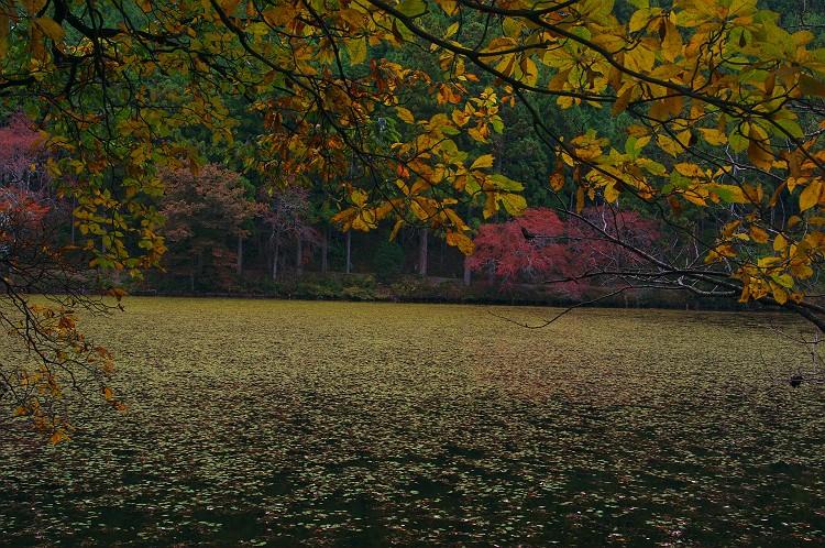 晩秋の静寂