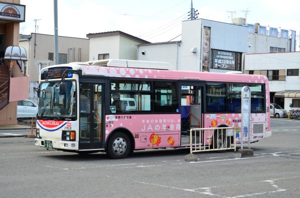 国際十王交通 2163(熊谷200か862)