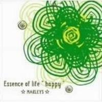 essence of life happy 2008