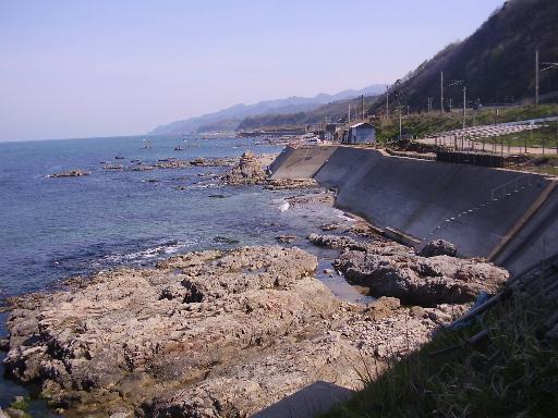 まぬけ・新潟1-09