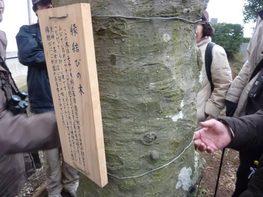 20100220・自然観察会36