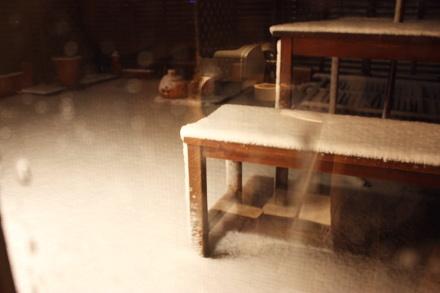 この冬最初の雪