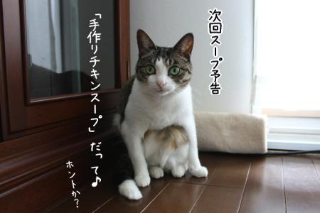 料理上手なヨメが欲しい。by mirura
