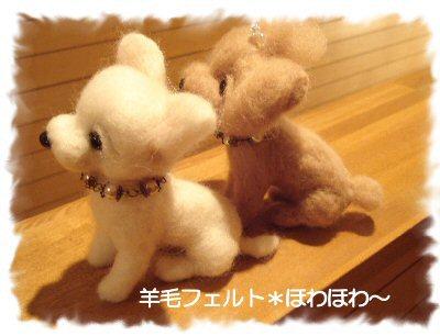 チワワちゃんとヨーキーちゃん2