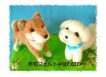 柴犬ちゃんとマルちゃん